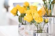 Skintos gėlės: priežastys, kodėl jos greitai vysta